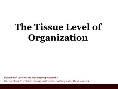 PowerPoint ® Lecture Slide Presentation prepared by Dr. Kathleen A. Ireland, Biology Instructor, Seabury Hall, Maui, Hawaii The Tissue Level of Organization.