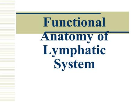 Functional Anatomy of Lymphatic System. Lymphatic System Core Functions  protects body against foreign material  assists in circulation of body fluids.