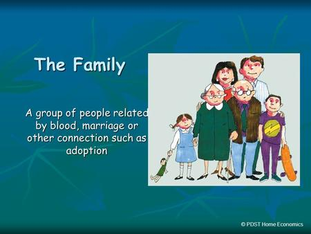 The Family A group of people related by blood, marriage or other connection such as adoption © PDST Home Economics.