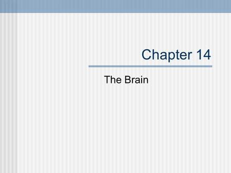 Chapter 14 The Brain. Cerebrum Divided into 2 hemispheres Corpus Callosum joins the 2 hemispheres Cortex- highly folded gray matter, deep grooves in the.