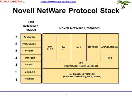 1 Novell NetWare Protocol Stack 1 2 3 4 5 6 7 Media Access Protocols (Ethernet, Token Ring, WAN, others) Physical Data Link Network Session Transport Presentation.