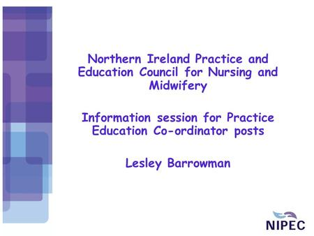 Northern Ireland Practice and Education Council for Nursing and Midwifery Information session for Practice Education Co-ordinator posts Lesley Barrowman.
