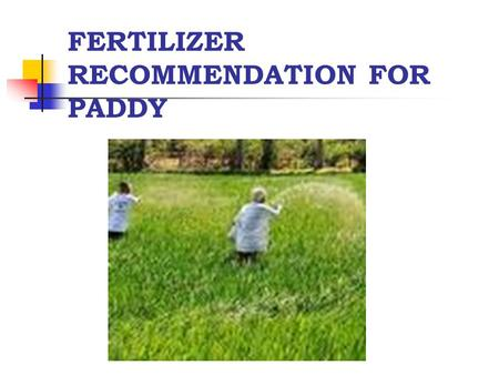 FERTILIZER RECOMMENDATION FOR PADDY