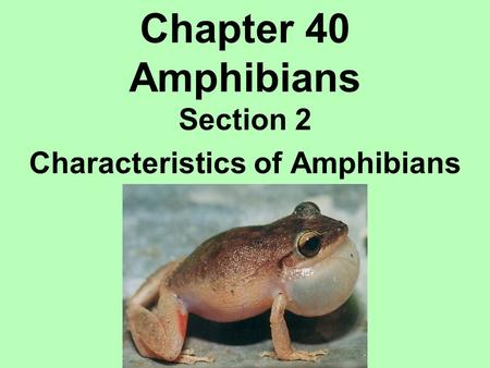 Section 2 Characteristics of Amphibians