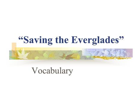 """Saving the Everglades"" Vocabulary. soggy Some animals make their soggy homes in the watery Everglades."