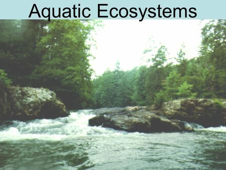 Aquatic Ecosystems. 4 things determine aquatic ecosystems: 1.Depth 2.Flow 3.Temperature 4.Chemistry.