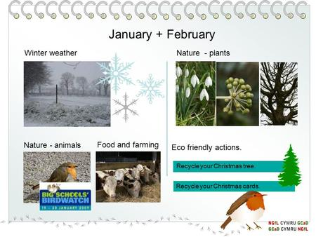January + February Nature - animals Nature - plantsWinter weather Eco friendly actions. Recycle your Christmas tree. Recycle your Christmas cards. Food.