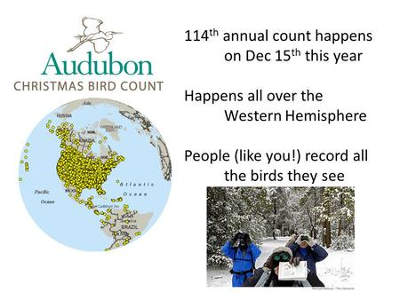 114 th annual count happens on Dec 15 th this year Happens all over the Western Hemisphere People (like you!) record all the birds they see.