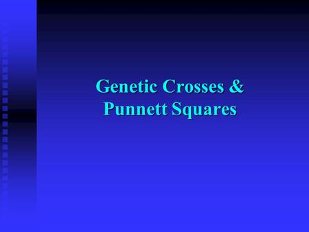 Genetic Crosses & Punnett Squares. Important Terms Dominant Trait : the trait that shows when two different alleles for the trait are inherited ex- tongue.