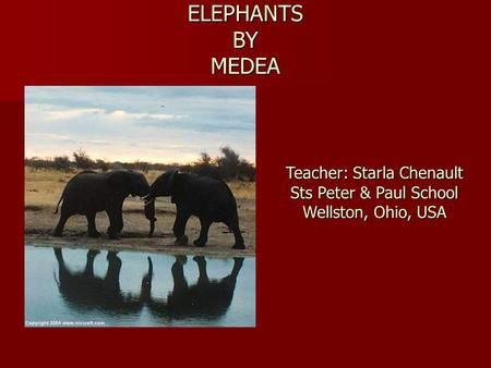 ELEPHANTS BY MEDEA Teacher: Starla Chenault Sts Peter & Paul School Wellston, Ohio, USA.
