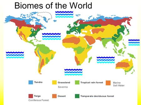 Biomes of the World Marine Salt Water Savanna Coniferous Forest.
