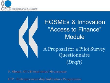 "HGSMEs & Innovation ""Access to Finance"" Module A Proposal for a Pilot Survey Questionnaire (Draft)"