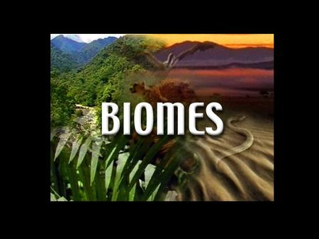What are Biomes? Biomes are regions in the world that share similar plant structures, plant spacing, animals, climate and weather.