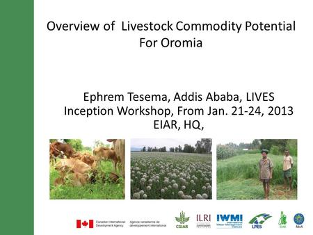 Overview of Livestock Commodity Potential For Oromia Ephrem Tesema, Addis Ababa, LIVES Inception Workshop, From Jan. 21-24, 2013 EIAR, HQ,