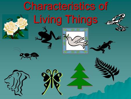 Characteristics of Living Things. 1. Made of Cells unicellular vs.. multicellular Red Blood cellsOnion skin epidermal cellsHuman cheek cells.