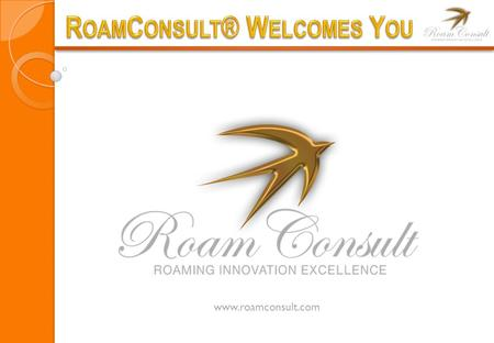 Www.roamconsult.com. RoamConsult is a boutique consulting firm based in Malaysia and South Africa, specializing in all Aspects of International Roaming.