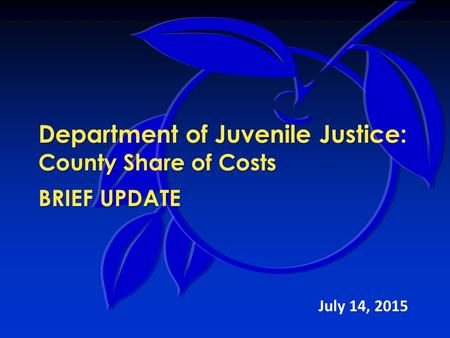 Department of Juvenile Justice: County Share of Costs BRIEF UPDATE July 14, 2015.