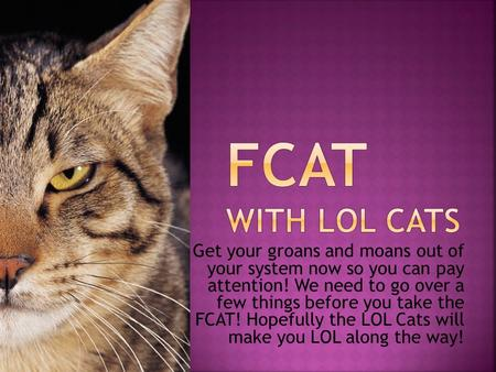 Get your groans and moans out of your system now so you can pay attention! We need to go over a few things before you take the FCAT! Hopefully the LOL.