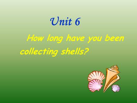 Unit 6 How long have you been collecting shells?