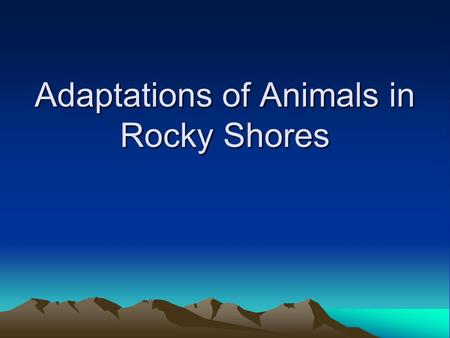 Adaptations of Animals in Rocky Shores. Adaptations to resist wave action The crashing wave action against the rocks is an important factor limiting the.