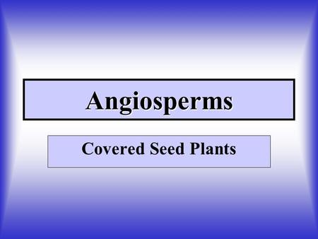Angiosperms Covered Seed Plants. Comparison of Monocots and Dicots Go to color plate.