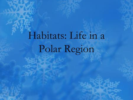 Habitats: Life in a Polar Region. What do polar region habitats look like? The only people that live in the Antarctic are scientists in research stations.
