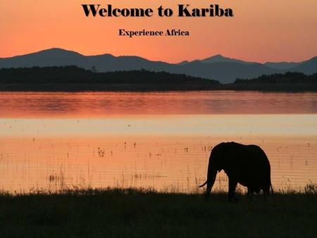 Welcome to Kariba Experience Africa. Content  Location  Culture  Activities  History.