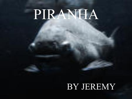 PIRANHA BY JEREMY HABITAT warm streams and lakes in South America North Brazil, Hawaii and parts of Central and North America.