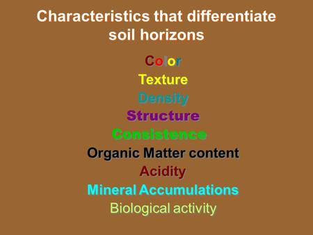 Characteristics that differentiate soil horizons Color Texture Density Structure Consistence Organic Matter content Acidity Mineral Accumulations Biological.