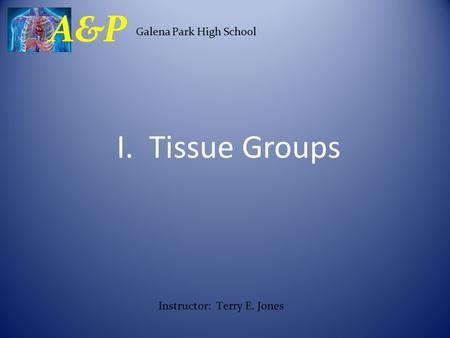 I. Tissue Groups Galena Park High School A&P Instructor: Terry E. Jones.