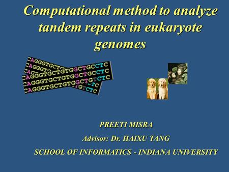PREETI MISRA Advisor: Dr. HAIXU TANG SCHOOL OF INFORMATICS - INDIANA UNIVERSITY Computational method to analyze tandem repeats in eukaryote genomes.