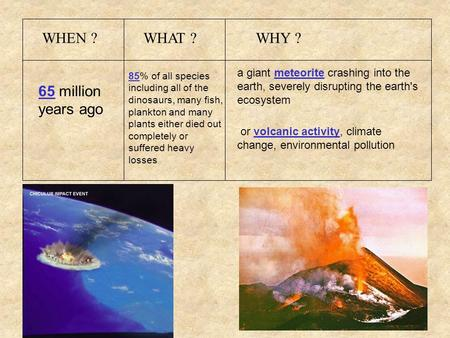 WHEN ?WHAT ?WHY ? 65 million years ago 85% of all species including all of the dinosaurs, many fish, plankton and many plants either died out completely.