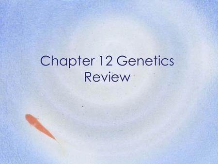 Chapter 12 Genetics Review. If a characteristic is sex- linked, it occurs more frequently in _______. Males.