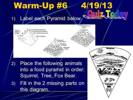 Warm-Up #6 4/19/13 1) Label each Pyramid below. 2) Place the following animals into a food pyramid in order: Squirrel, Tree, Fox Bear. 3) Fill in the 2.