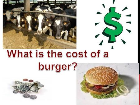 In order to calculate the ACTUAL COST of a hamburger we must include all of our ingredients AND the hidden costs……