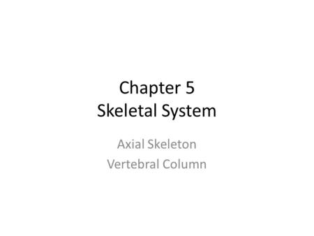 Chapter 5 Skeletal System Axial Skeleton Vertebral Column.