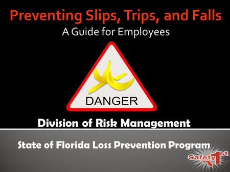 A Guide for Employees Division of Risk Management State of Florida Loss Prevention Program.