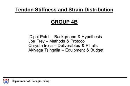 Department of Bioengineering Tendon Stiffness and Strain Distribution GROUP 4B Dipal Patel – Background & Hypothesis Joe Frey – Methods & Protocol Chrysta.