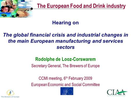 Hearing on The global financial crisis and industrial changes in the main European manufacturing and services sectors Rodolphe de Looz-Corswarem Secretary.