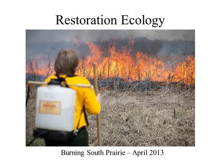 Restoration Ecology Burning South Prairie – April 2013.
