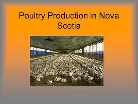 Poultry Production in Nova Scotia. Terms to Know Breaking Stock: Shelled eggs designated for breaking to produce egg products. Broiler/Fryer Chickens:
