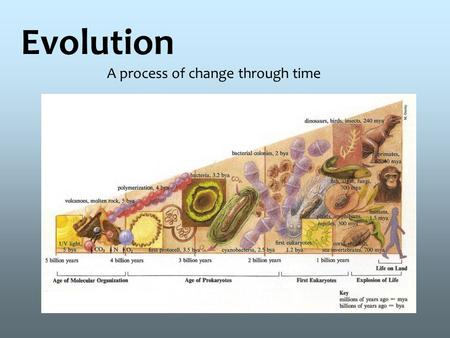 Evolution A process of change through time. 2 Evolution -is the change in the inherited traits of a population of organisms through successive generations.