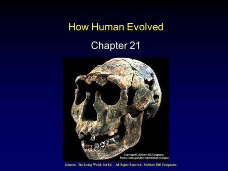 How Human Evolved Chapter 21