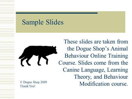 Sample Slides These slides are taken from the Dogue Shop's Animal Behaviour Online Training Course. Slides come from the Canine Language, Learning Theory,