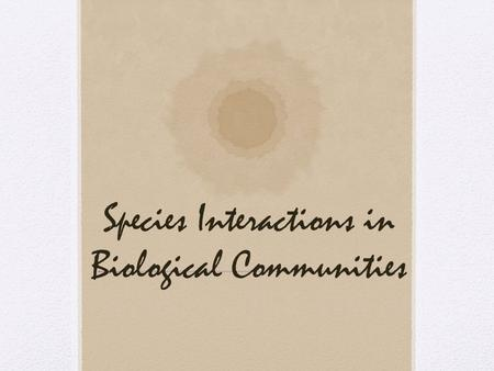 Species Interactions in Biological Communities. Community Several different species interacting in the same geographic area Types of Interactions Competition.