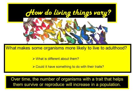 How do living things vary?