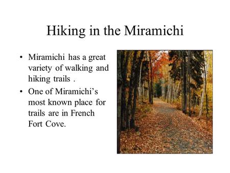 Hiking in the Miramichi Miramichi has a great variety of walking and hiking trails. One of Miramichi's most known place for trails are in French Fort Cove.