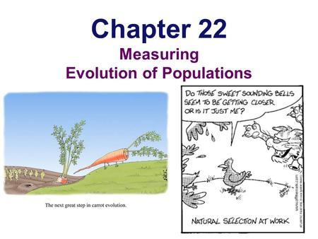 Chapter 22 Measuring Evolution of Populations Populations & Gene Pools  Concepts  a population is a localized group of interbreeding individuals 