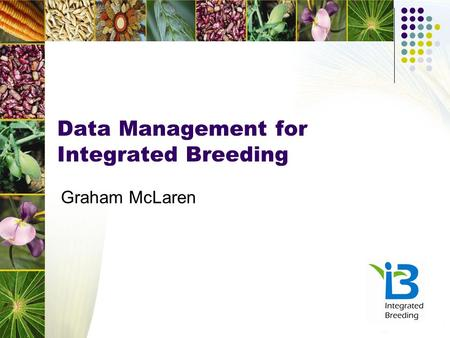 Data Management for Integrated Breeding Graham McLaren.