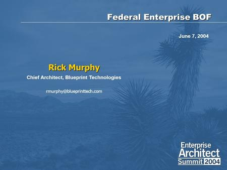 Federal Enterprise BOF Rick Murphy Chief Architect, Blueprint Technologies June 7, 2004.